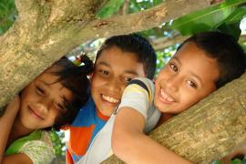 Climbing trees - photo: M. Reyes