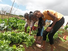 Children having fun as they harvest fresh vegetables for lunch (photo: SOS archives).