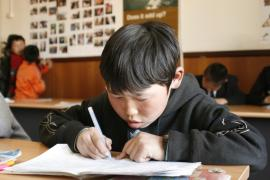 Young boy during class - photo: C. Martinelli