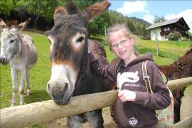 Animals help children overcome trauma - photo: Sandra Muehlburger